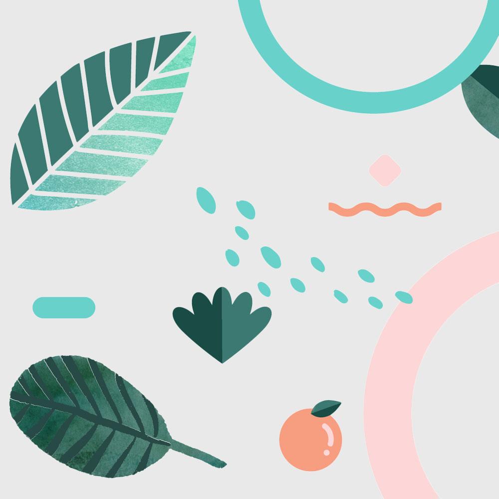 Tannk Co illustrations